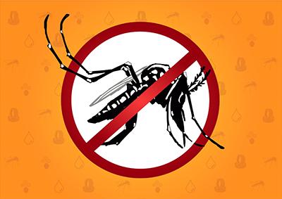 Eliminar o mosquito da dengue é sua responsabilidade. Não facilite.